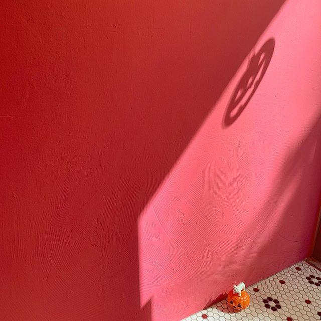 カフェのピンクの壁にパンプキンの影!?.少し秋っぽくなってきたのでホットドリンクおすすめです️️.#niima #niimacafe #niimacafeetsalon #cafe #coffee #ニーマカフェ #ニーマカフェエサロン #南森町 #大阪天満宮 #大阪市北区 #大阪市北区東天満 #東天満カフェ #カフェスタグラム #大阪カフェ巡り #大阪カフェ #大阪珈琲 #エスプレッソ #instacafe #coffeestand #coffeeshop #タピオカ #タピオカオレンジ #タピオカオレンジジュース #レインボーソーダ #ソーダ #天神祭 #カフェインレス #ノンカフェイン