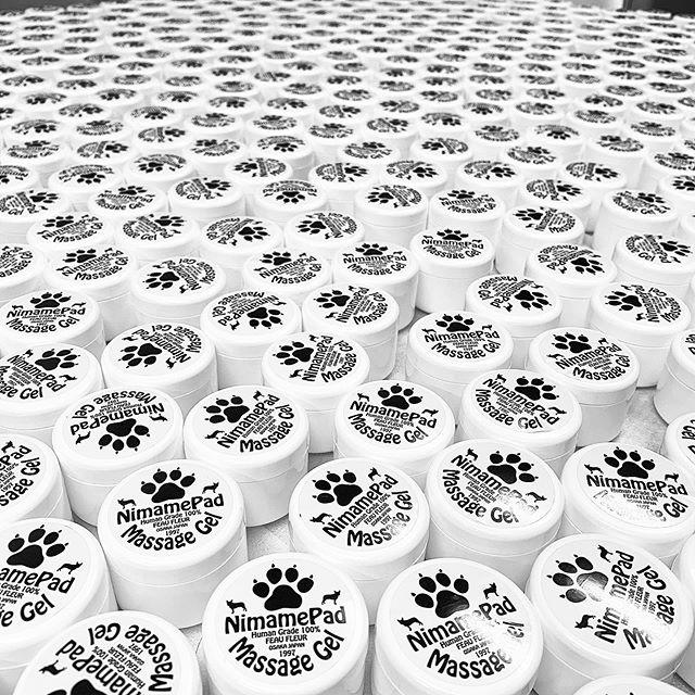□臨時休業のお知らせ□いつもありがとうございます!11月2日(土)〜4日(月)の3日間はインテックス大阪で開催されるPet博2019に参加の為お休みさせていただきます。#フレンチブルドッグ #フレブル #ブヒ #buhi #frenchbulldog #frenchbull #dog #大阪 #犬 #niima #pet博2019 #niima #niimacafe #niimacafeetsalon #cafe #coffee #ニーマカフェ #ニーマカフェエサロン #南森町 #大阪天満宮 #大阪市北区 #大阪市北区東天満 #東天満カフェ #カフェスタグラム #大阪カフェ巡り #大阪カフェ #大阪珈琲  #instacafe #coffeestand #coffeeshop